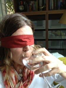 My idea of what blind wine tasting might be like