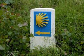 Camino Shell for Wayfinding