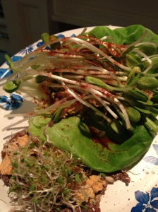 Raw Tacos with 3 Sprout Mix and Sunflower Sprouts